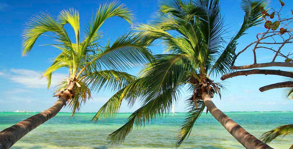 El paraíso caribeño te está esperando