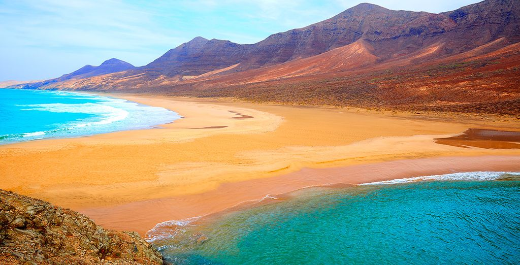 Fuerteventura te encantará