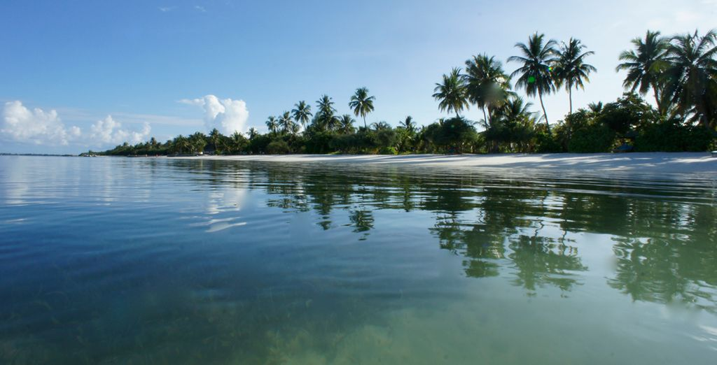 Ven a descubrir un paraíso de relax sin igual