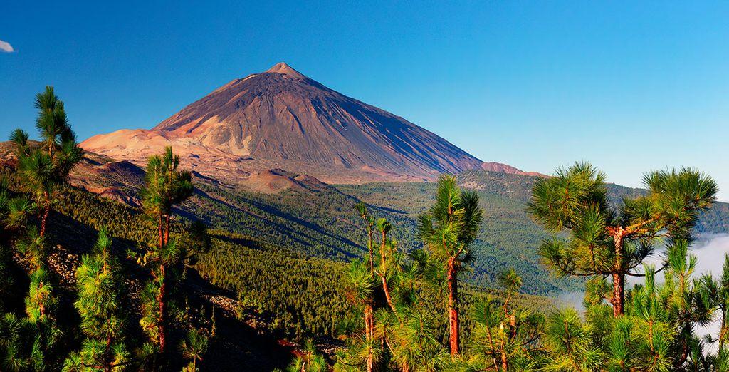 La isla de Tenerife te está esperando