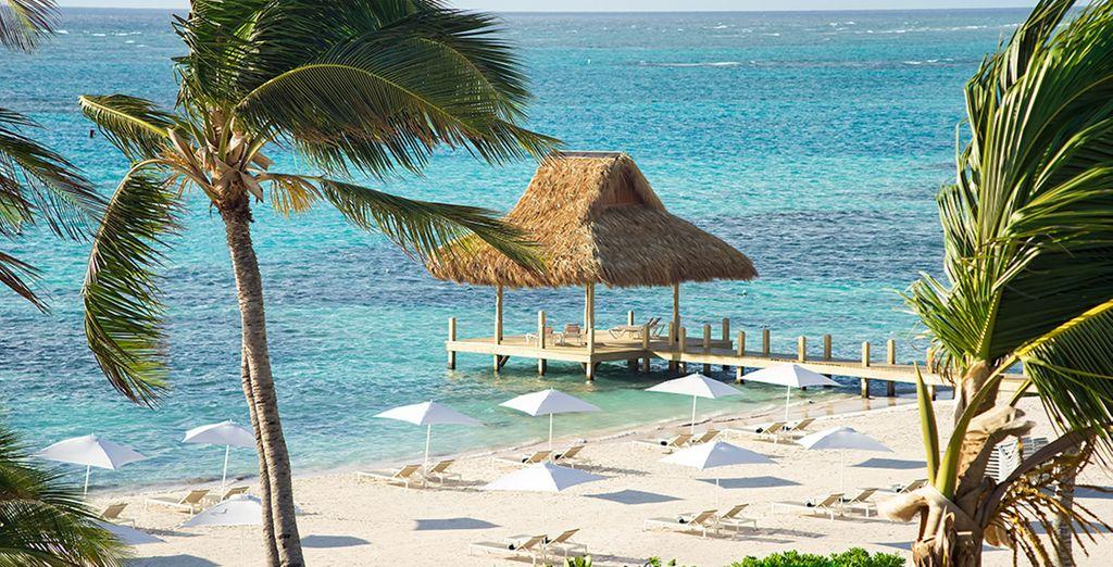 Un hotel que cuenta con una playa privada