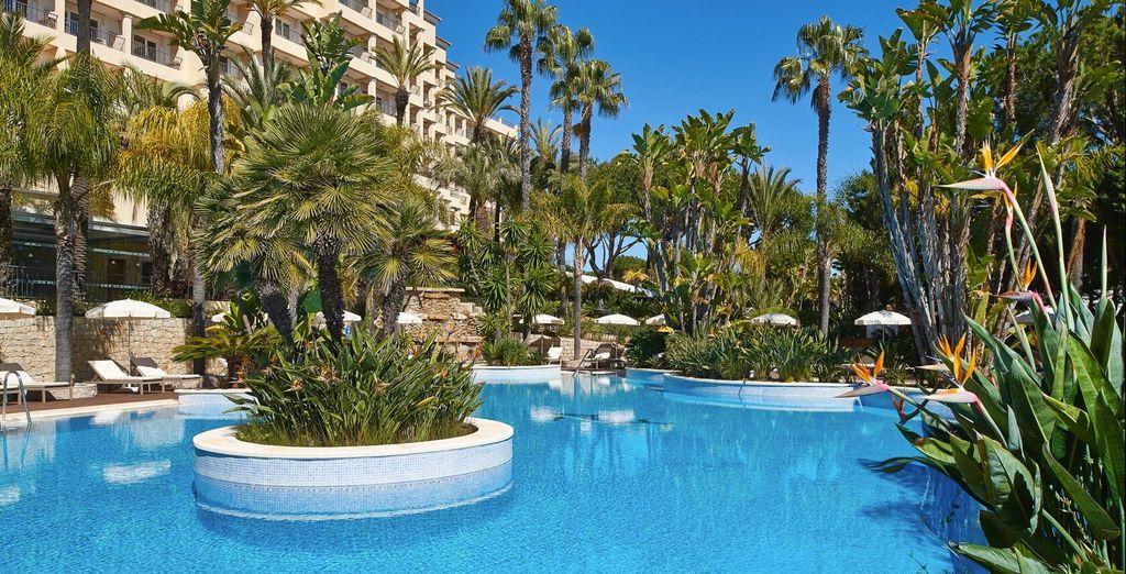 Refréscate en la gran piscina del hotel...
