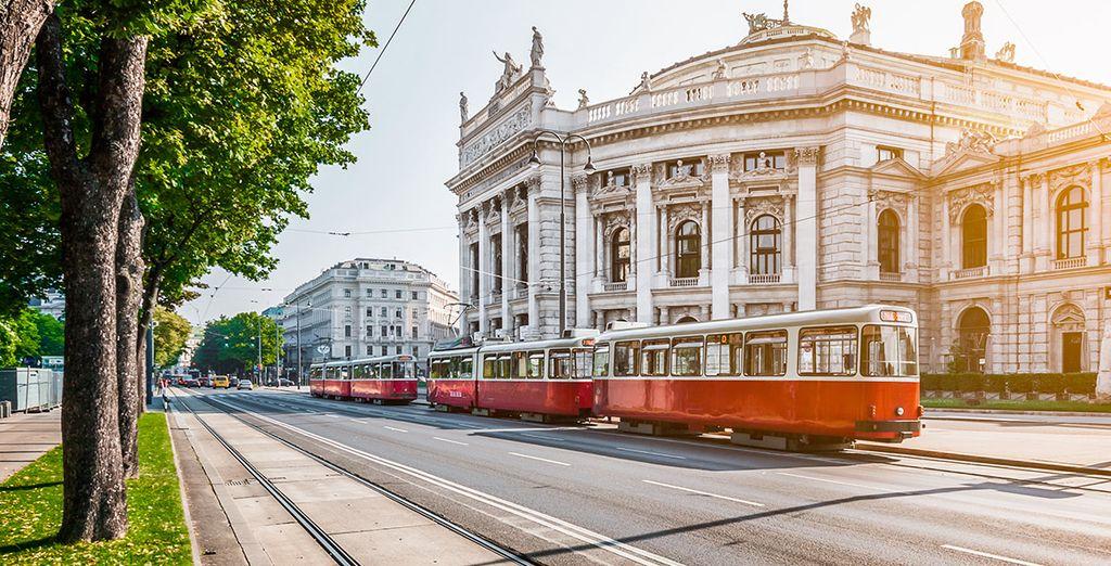 Deja que Viena te llene de alegría y color