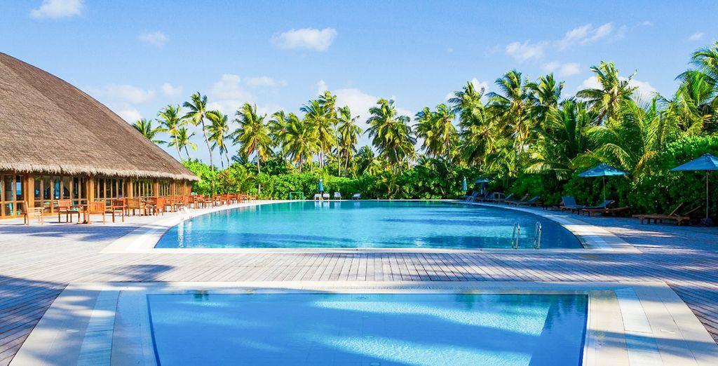 Refréscate en su espectacular piscina