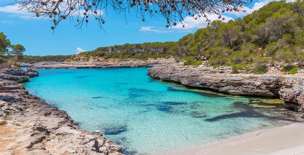 ¡Quedarás prendado de Mallorca! Alójate en FERGUS Style Cala Blanca Suites 4*