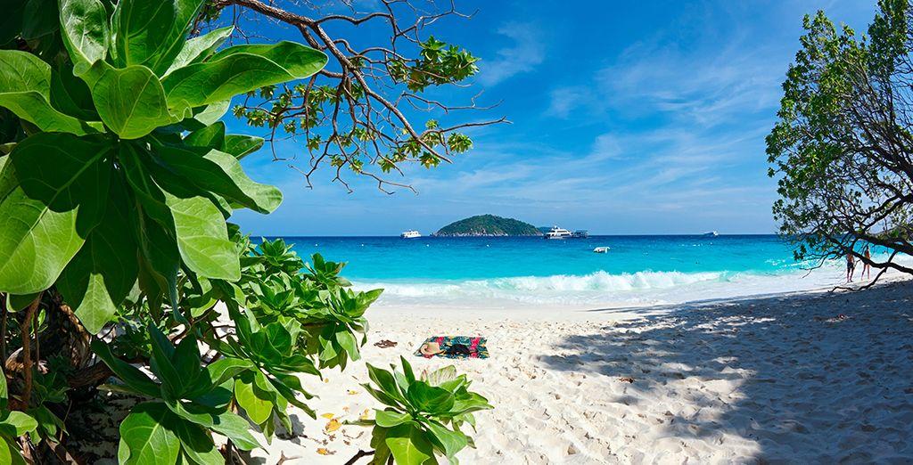 Playas paradisíacas para tus vacaciones
