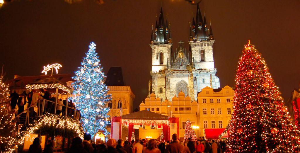 Acércate a la Plaza de la Ciudad Vieja y contempla este festival de luces y color
