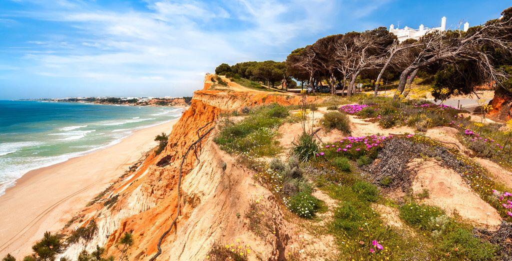 Descubre playas infinitas