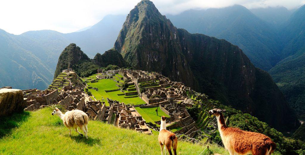 Un recorrido único para conocer lo mejor de Perú