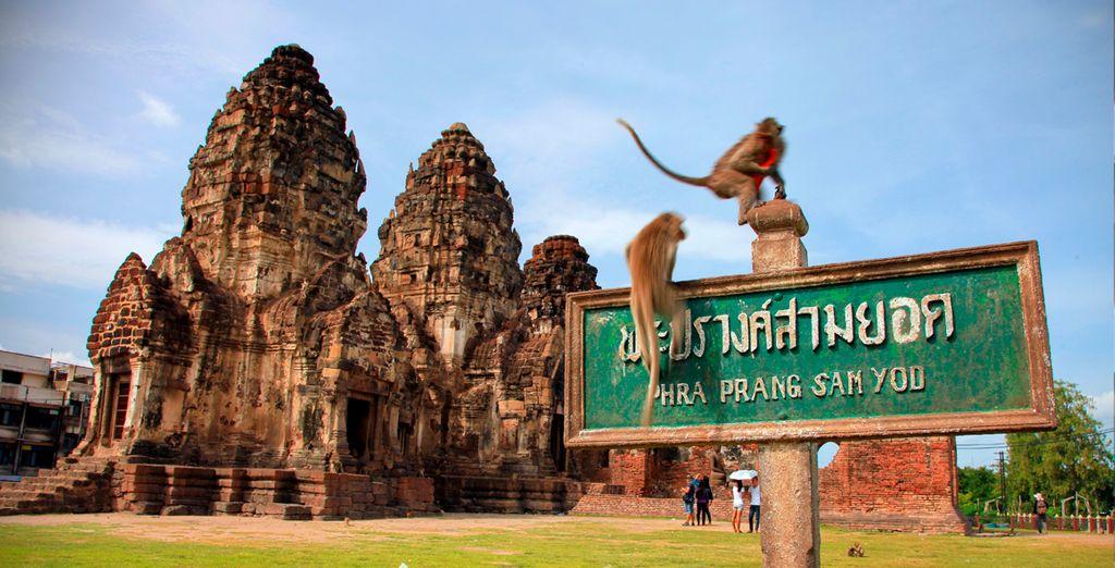 Para a visitar Lopburi, la ciudad de los monos