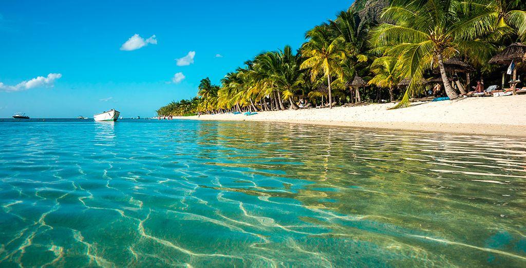 Imagínate bañarte cada día en estas aguas cristalinas, acariciadas por el sol y la brisa del Índico