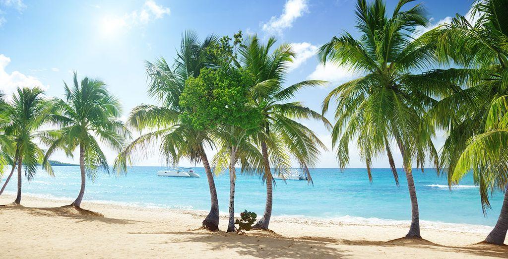 Punta Cana y sus playas te esperan