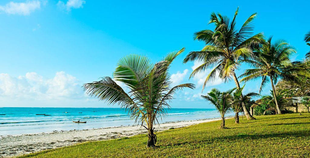 Acércate a la playa de Diani...