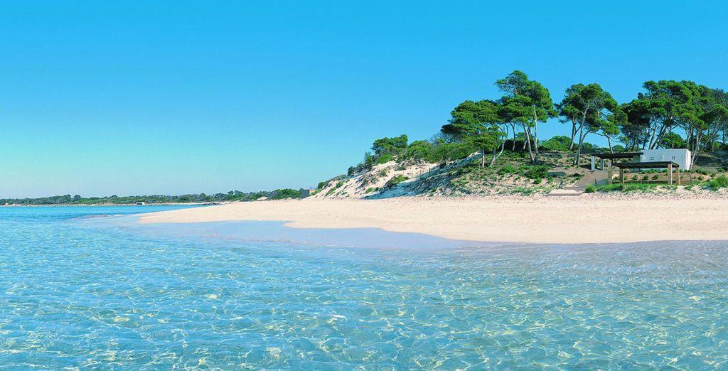 Cerca encontrarás las mejores playas