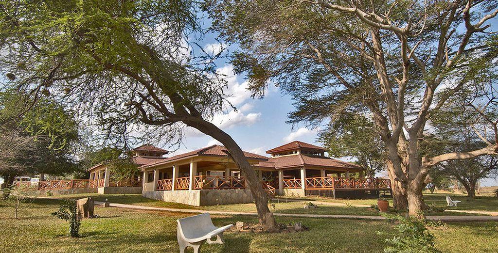 Tsavo East te alojarás en Ashnil Aruba Lodge