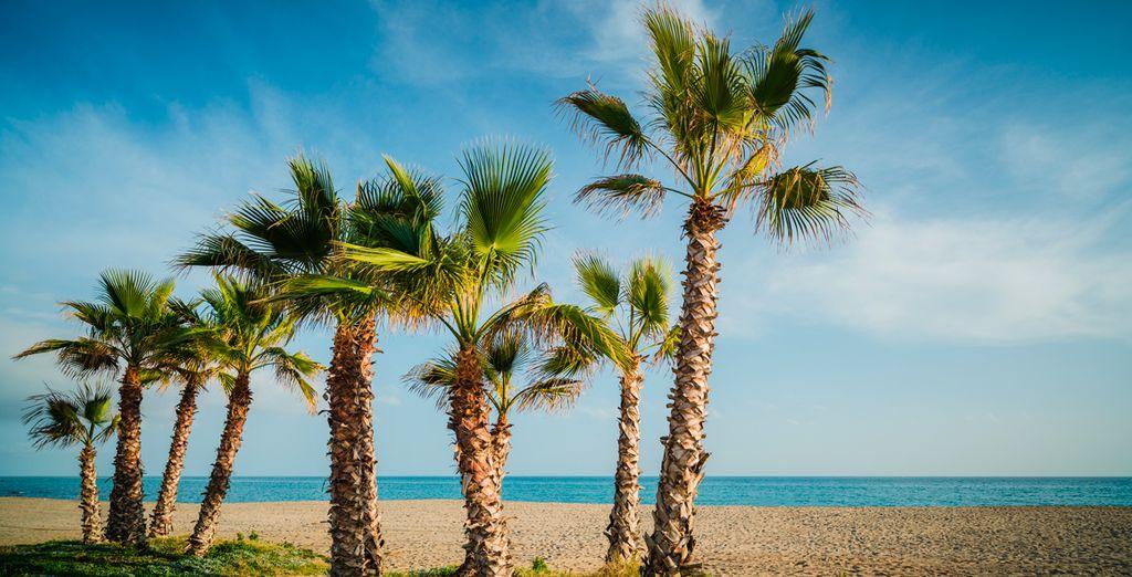 Disfruta de las tranquilas aguas del Mediterráneo
