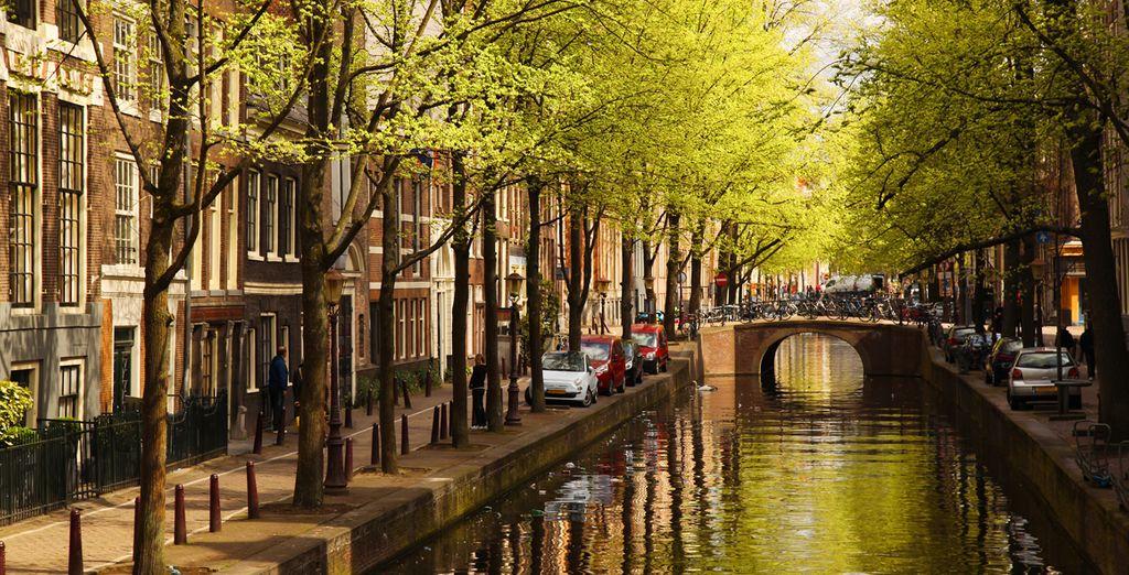 Los canales de Amsterdam, idóneos para pasear