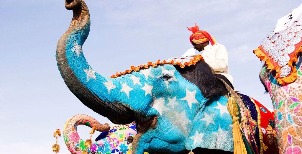 En tu excursión a Amber, subirás a lomos de un elefante hasta llegar al fuerte