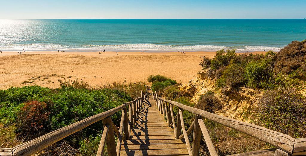 Costa de la Luz & Doñana