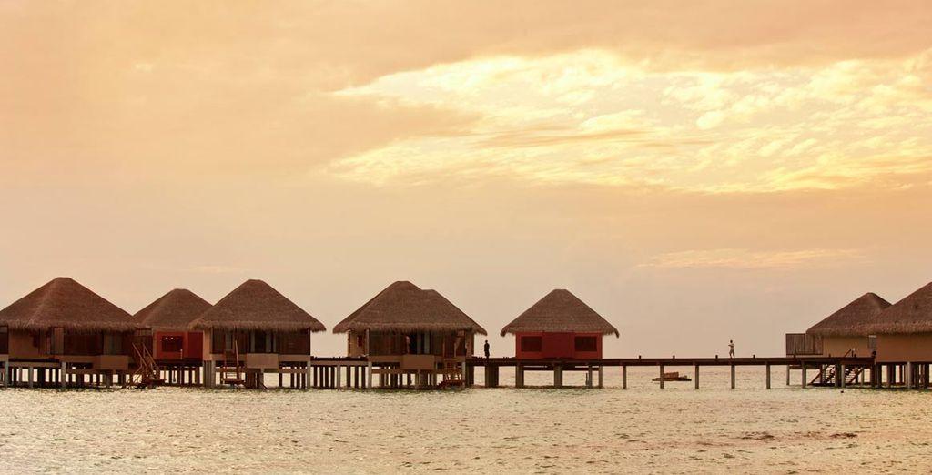El paraíso se da forma en Maldivas