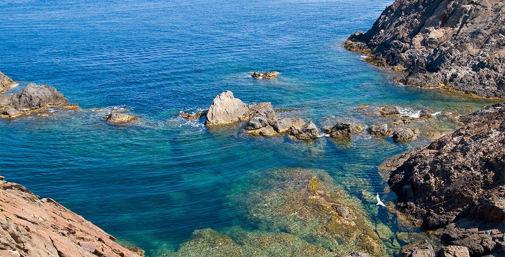 Disfrute de las vistas que ofrecen las maravillosas calas de la Costa Brava