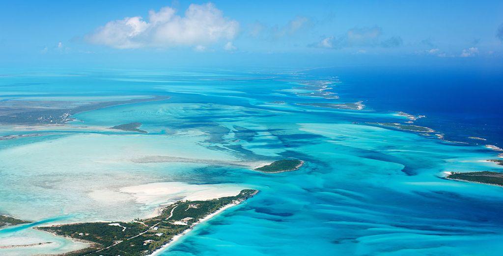 Después de esta fascinante ciudad, te brindamos unos días de relax en las Bahamas