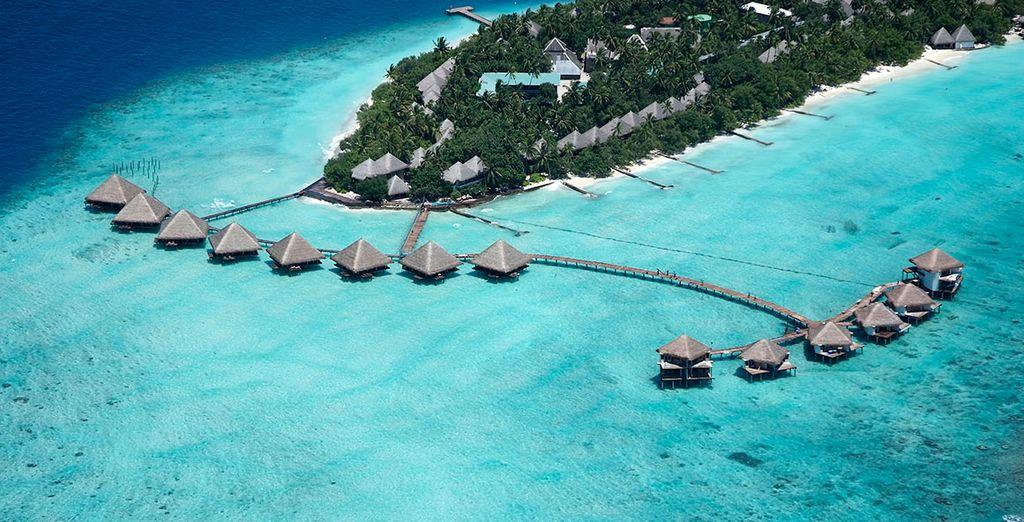 Descubra el paraíso en Maldivas
