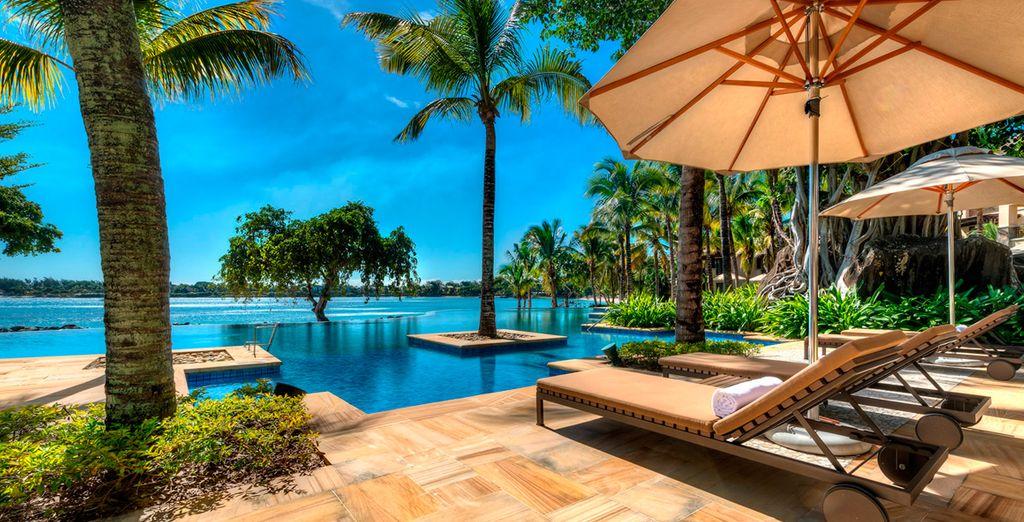 ¡Mauricio, el destino que buscabas para tus vacaciones!