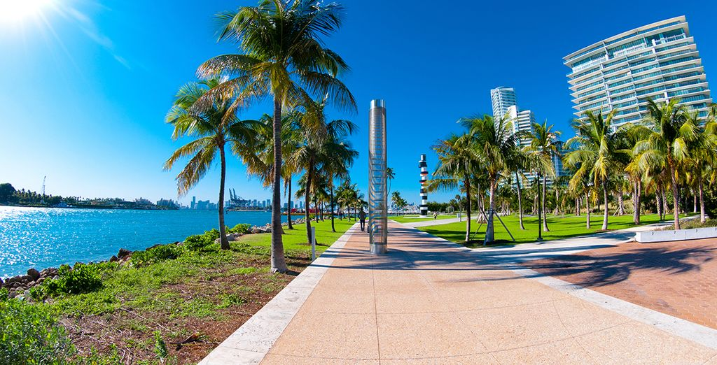 Déjese enamorar por la belleza de Miami
