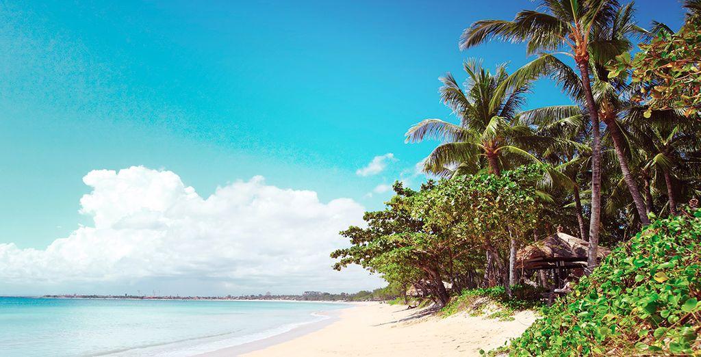 Es hora de soñar y viajar a Bali, playas sorprendentes le esperan en Jimbaran