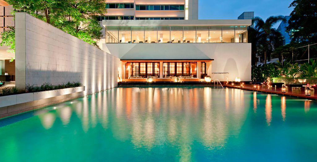 Disfrute de los 20 metros de piscina que dispone el hotel