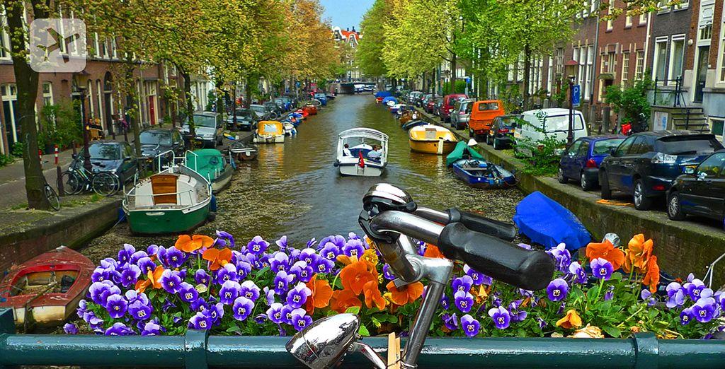 Descubra Ámsterdam
