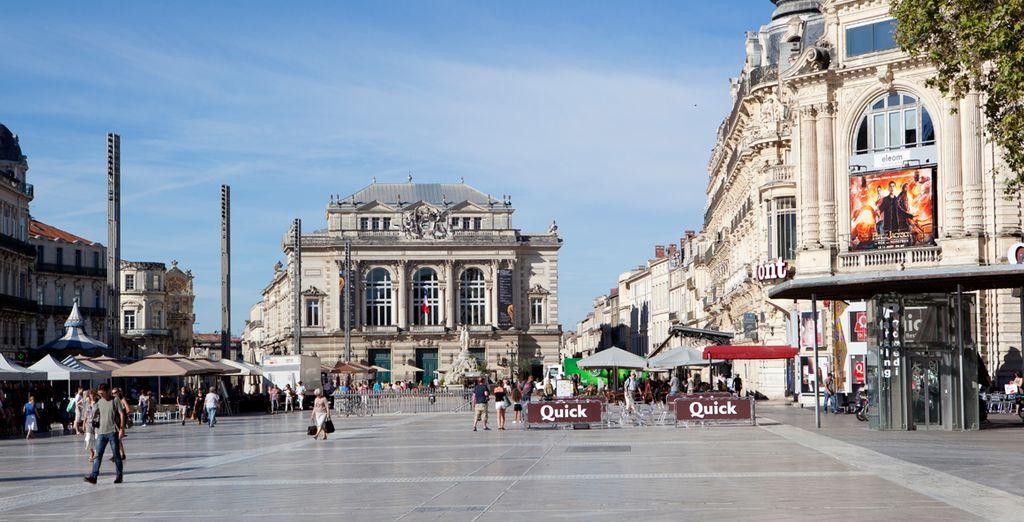 Montpellier le cautivará