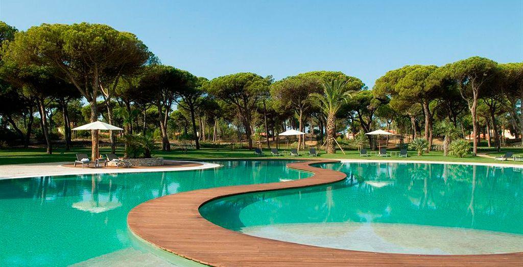 Disfrute de sus dos piscinas al aire libre