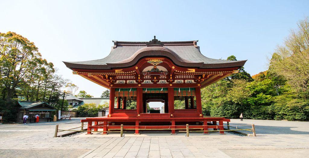 Visitarás el Tsurugaoka Hachimangu, el santuario sintoísta más importante de la ciudad