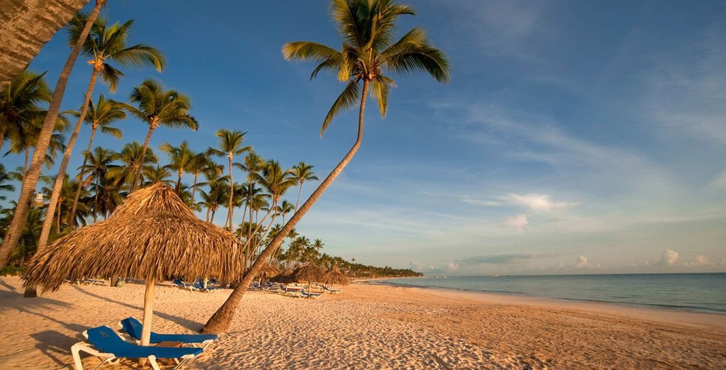 Disfrute de la Playa de Bávaro enfrente del hotel
