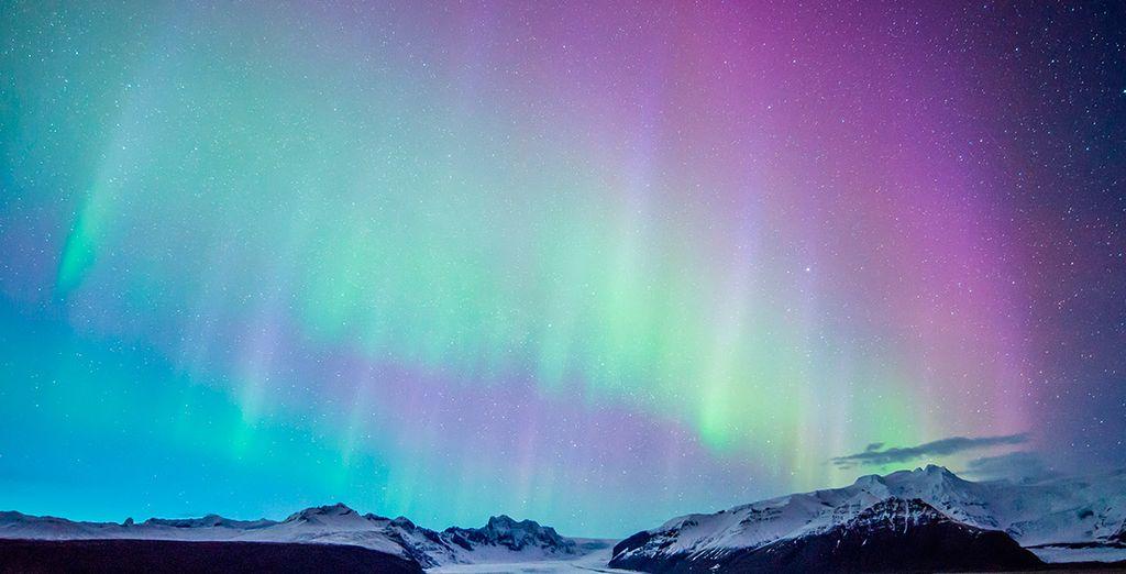 Atrévete a descubrir las preciosas auroras boreales
