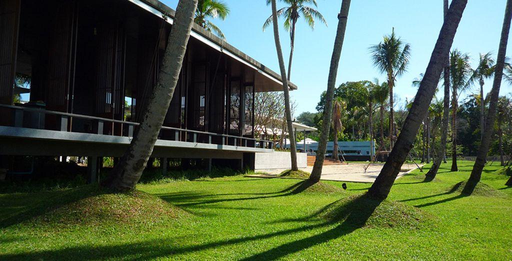 Pasee por sus alrededores y respire la paz que emana Phuket