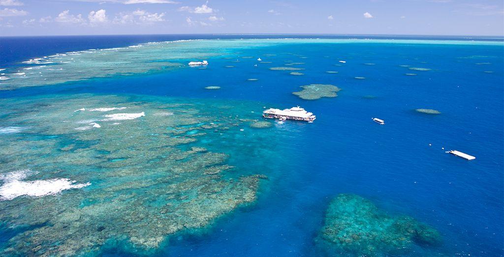 Gran Barrera del Coral...
