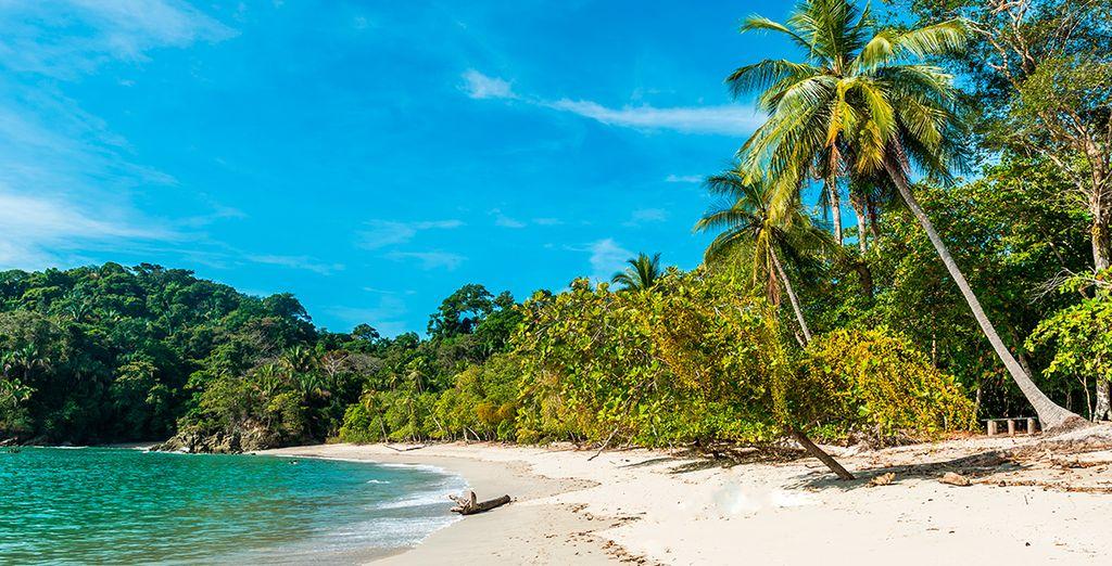 Aprovecha para hacer snorkel en estas playas tropicales