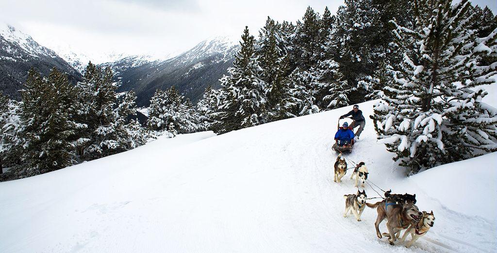 Ou même balade en chiens de traîneaux... Venez prendre l'air en Andorre !