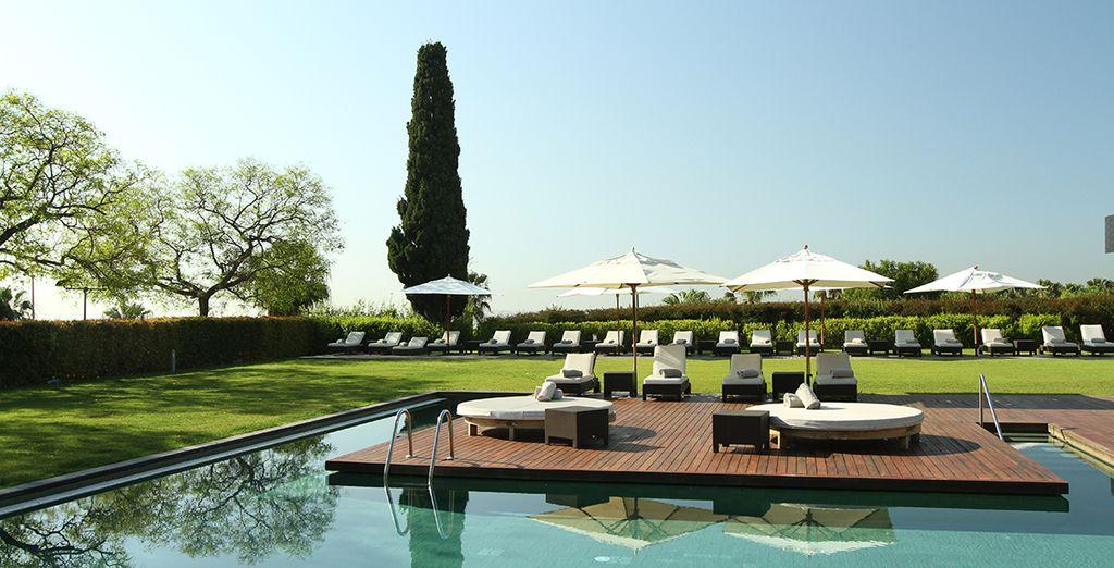 Prenez un bain de soleil au bord de la piscine