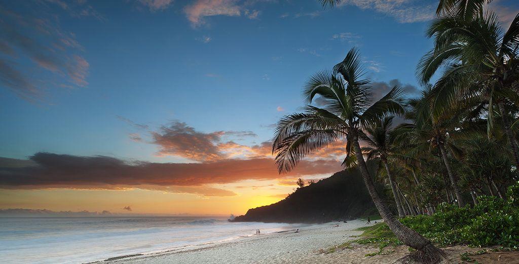 Cette île sauvage et hors norme va vous émerveiller...