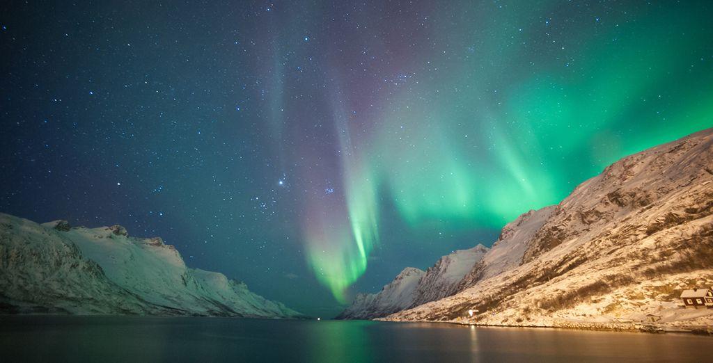 Les aurores boréales de Norvège, un spectacle à ne pas rater