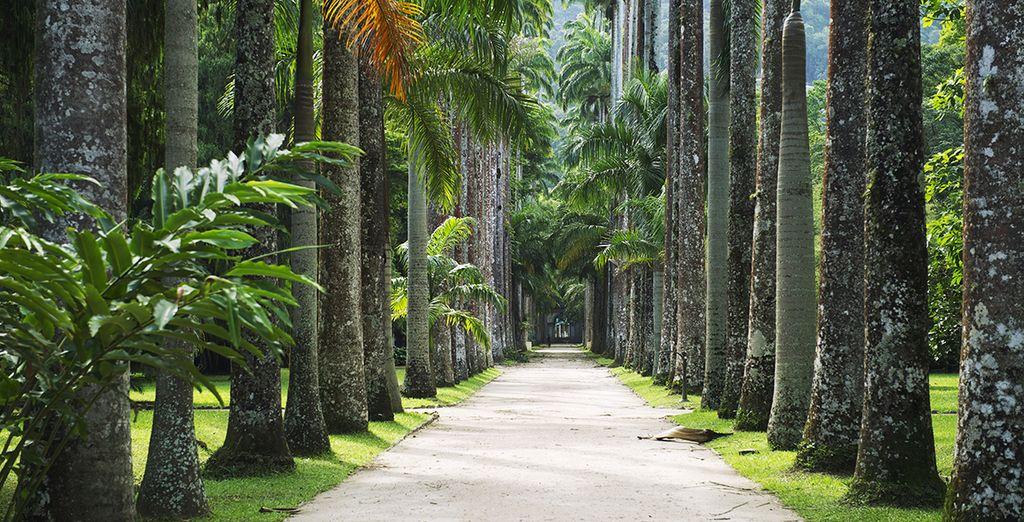 Et de son sublime jardin botanique