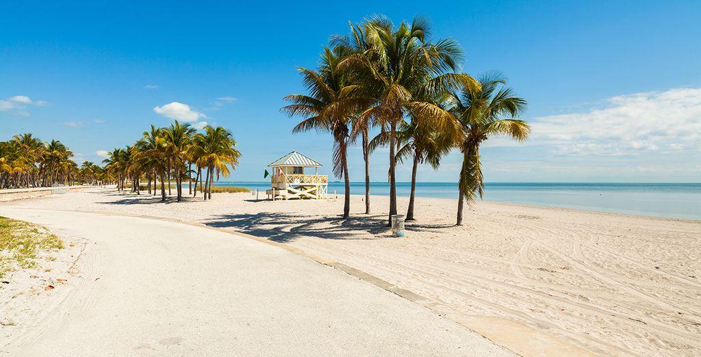 Profitez ensuite des plages de Miami