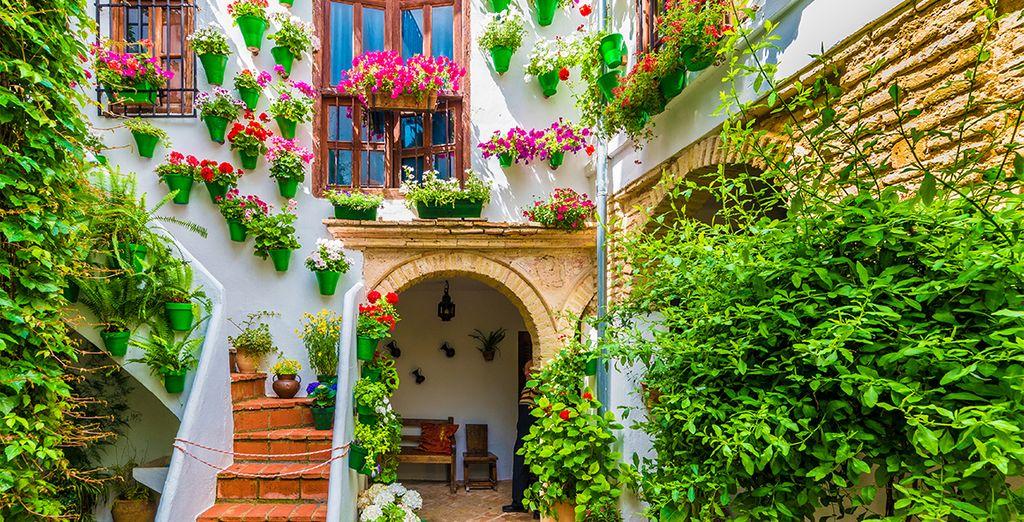 Visite des différents quartiers verdoyants de Malaga
