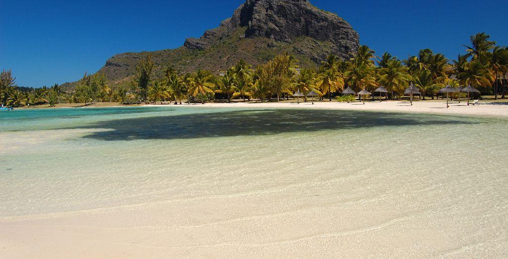 Et vous prélasser au bord de plages sublimes !