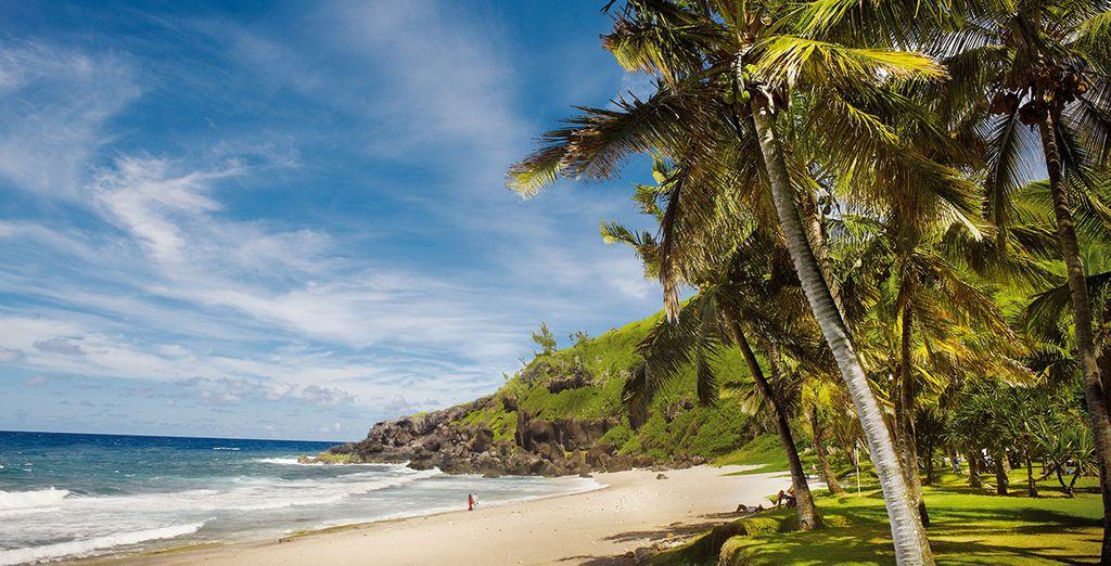 Découvrez les plages idylliques de La Réunion...