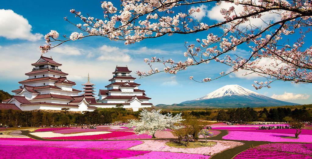 Le Japon avec Voyage Prive